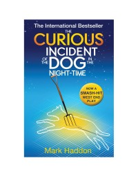 The Curious Incident of the Dog in the Night-time - Novel